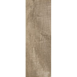 TROPHY BROWN GRES SZKL. MAT. 20X60 G1